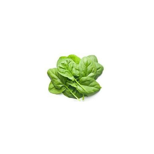 Organic Baby Spinach 120g